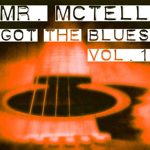 Mr. Mctell Got the Blues, Vol. 1 von Blind Willie McTell