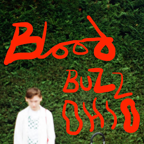 Bloodbuzz Ohio von Soak