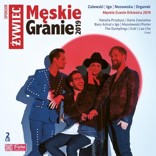 Męskie Granie 2019 by Various Artists