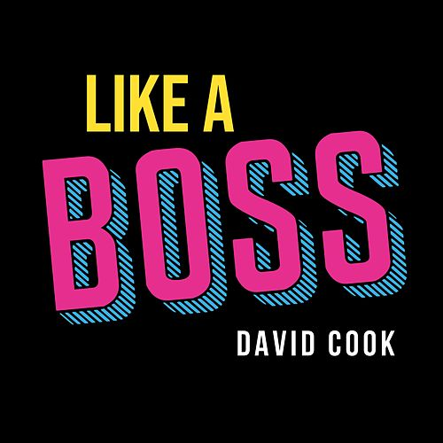 Like a Boss de David Cook