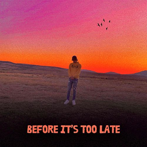 Before It's Too Late by Neeze