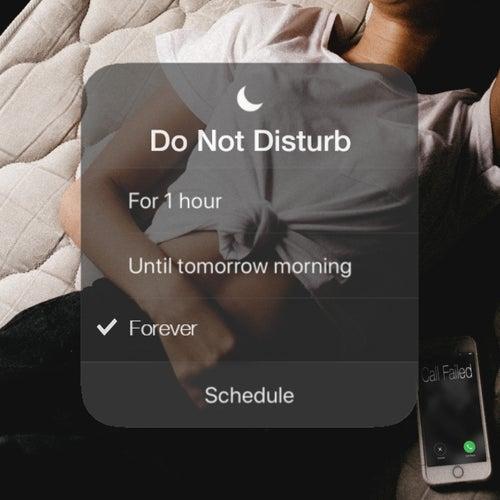 Do Not Disturb by Janq