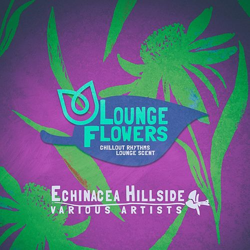 Lounge Flowers - Echinacea Hillside di Various Artists