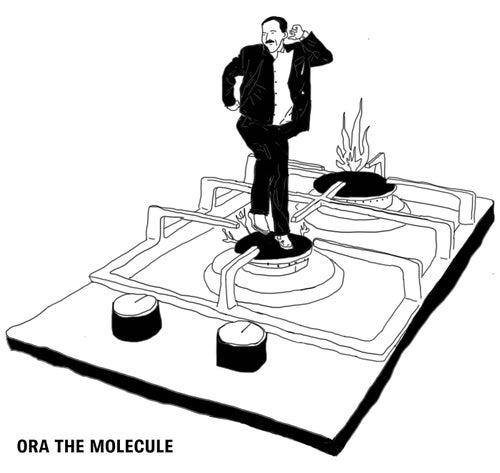 Here Comes the Hotstepper de Ora The Molecule