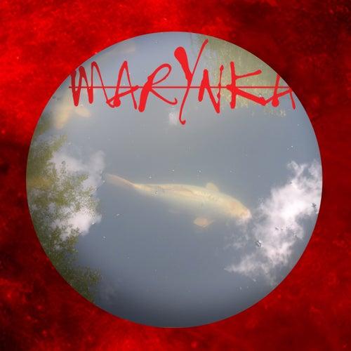 Swan Cloud by Marynka