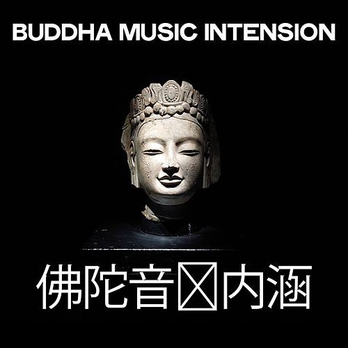 Buddha Music Intension 佛陀音乐内涵 von Various Artists