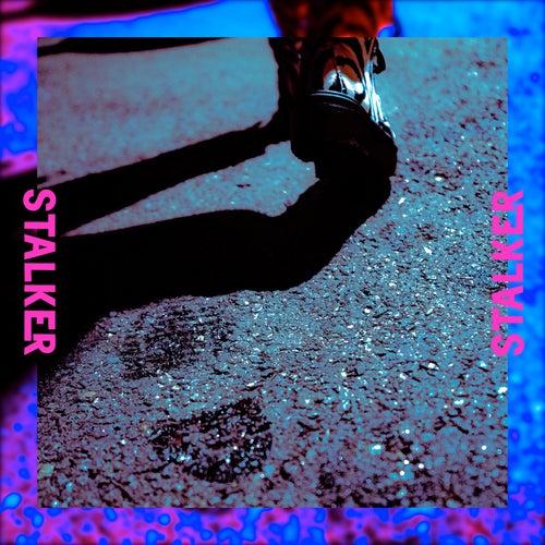 Stalker de Dion