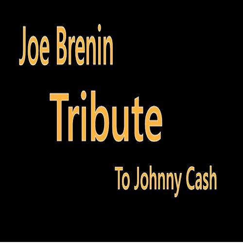 Tribute to Johnny Cash de Joe Brenin
