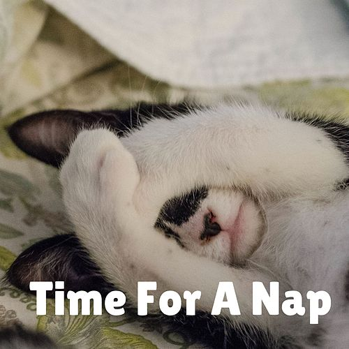 Time for a Nap by Delaware Saints