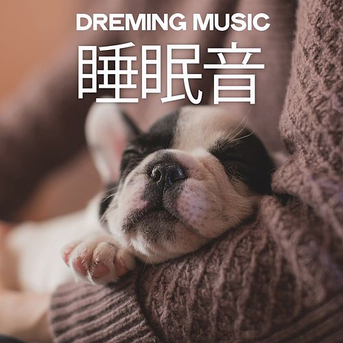 Dreaming Music (睡眠音) di Various Artists