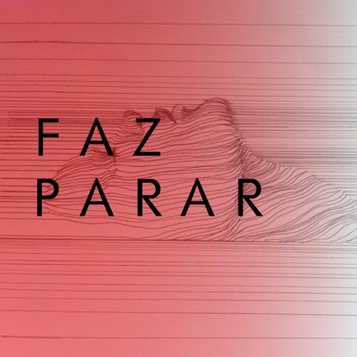 Faz Parar by Layla Policarpo