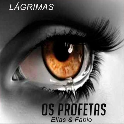 Lágrimas von Os Profetas Elias e Fabio