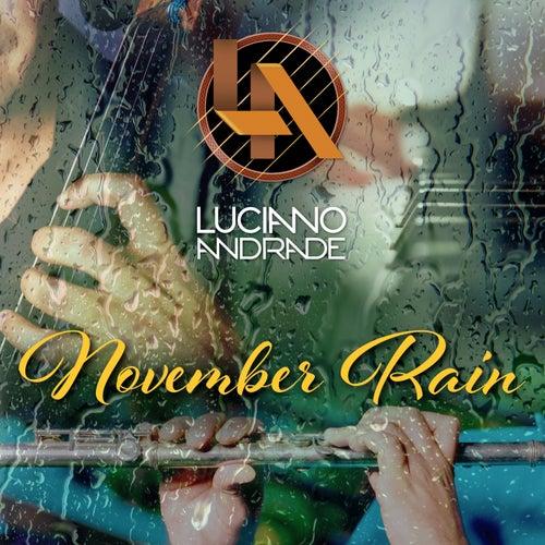 November Rain by Luciano Andrade