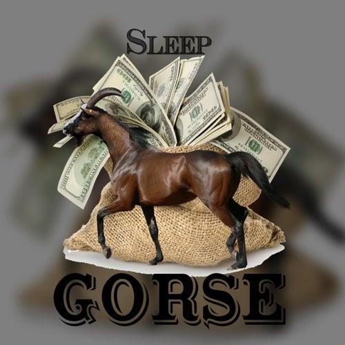 Gorse de Sleep