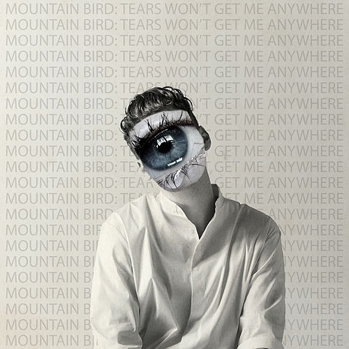 Tears Won't Get Me Anywhere by Mountain Bird