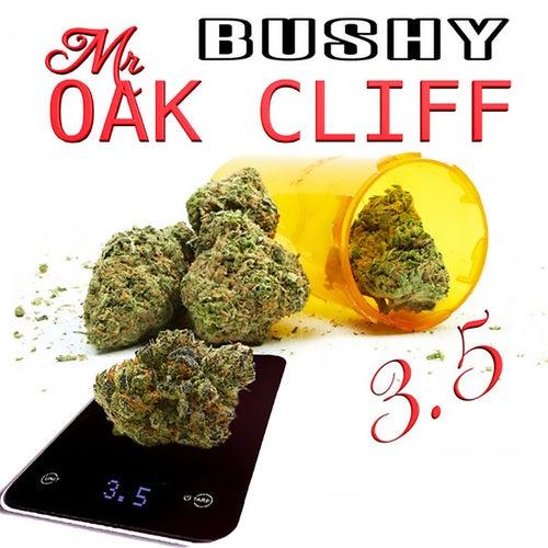Mr. Oak Cliff 3.5 de Bushy Mr Oak Cliff