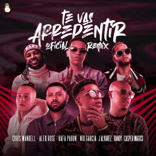 Te Vas Arrepentir (Remix) de Chris Wandell