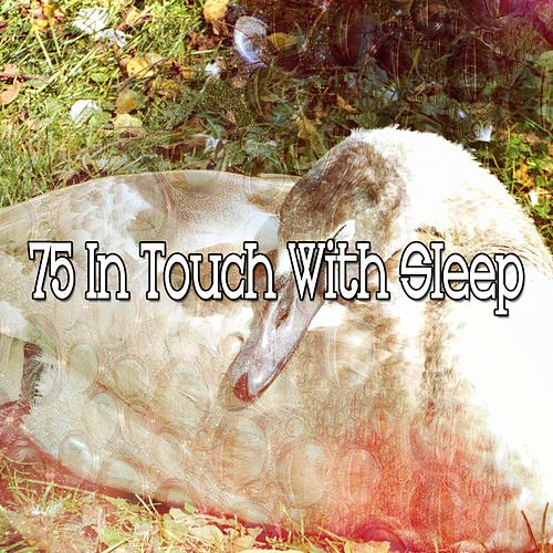 75 In Touch with Sleep de White Noise Babies