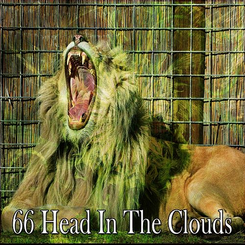 66 Head in the Clouds by S.P.A