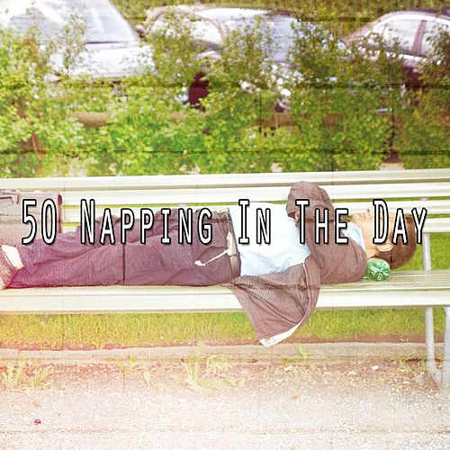 50 Napping in the Day de White Noise Babies