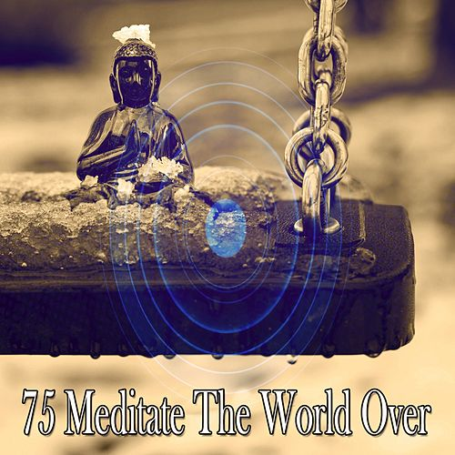 75 Meditate the World Over by Classical Study Music (1)