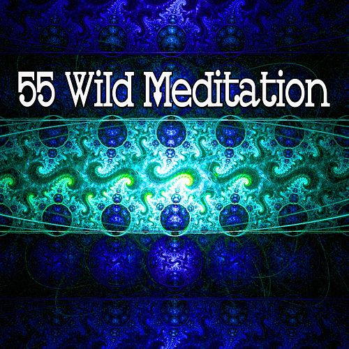 55 Wild Meditation by Yoga Workout Music (1)