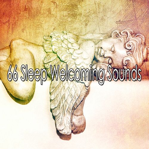66 Sleep Welcoming Sounds de Lullaby Land