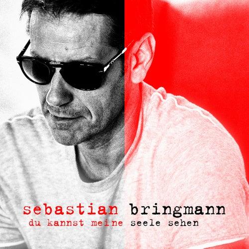 Du kannst meine Seele sehen von Sebastian Bringmann