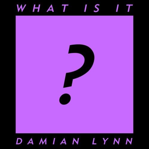 What Is It by Damian Lynn