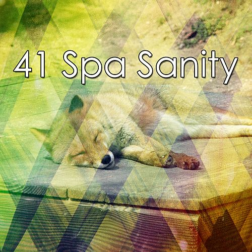 41 Spa Sanity de Lullaby Land