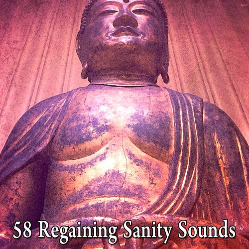 58 Regaining Sanity Sounds von Massage Therapy Music