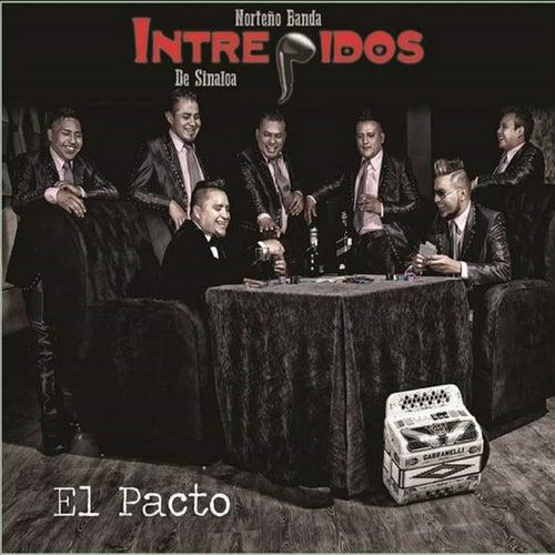 El Pacto by Intrépidos de Sinaloa