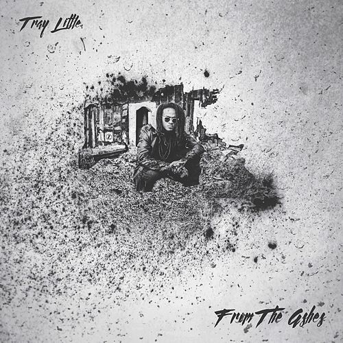 From the Ashes by Tray Little
