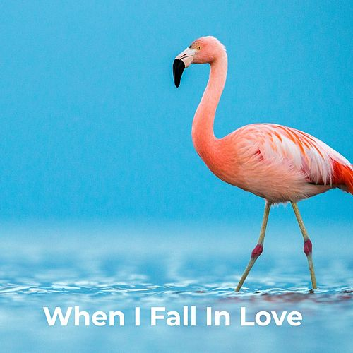 When I Fall In Love de The Flamingos