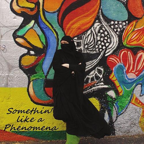 Somethin' like a Phenomena by Phenomena