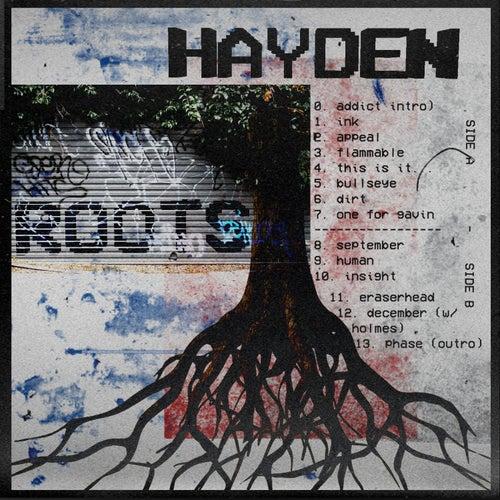 Roots by Hayden