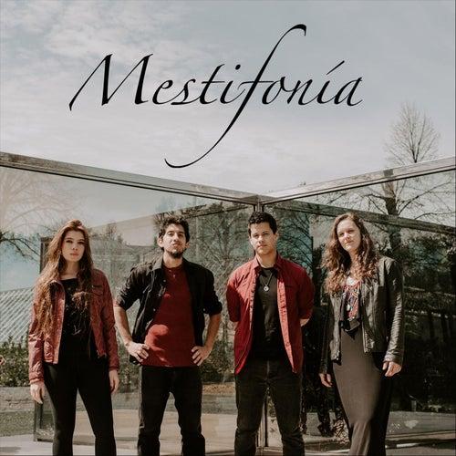 Mestifonía by Mestifonía