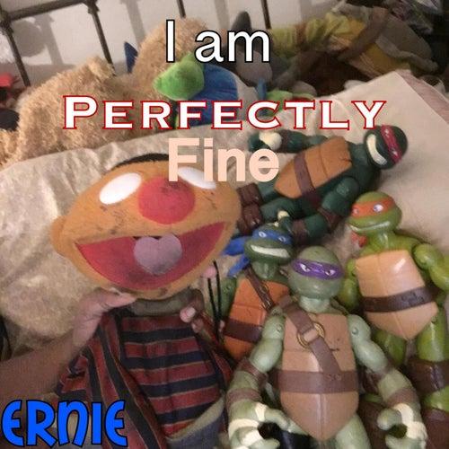 I Am Perfectly Fine de Ernie