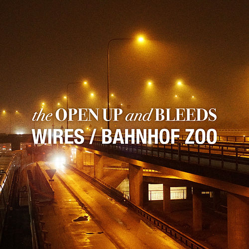 Wires/Bahnhof Zoo de The Open Up And Bleeds