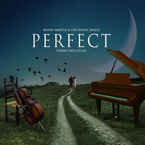 Perfect (Piano & Cello) von Benny Martin