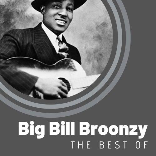 The Best of Big Bill Broonzy by Big Bill Broonzy