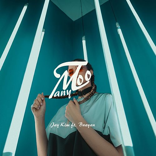 Too Many de Jay Kim