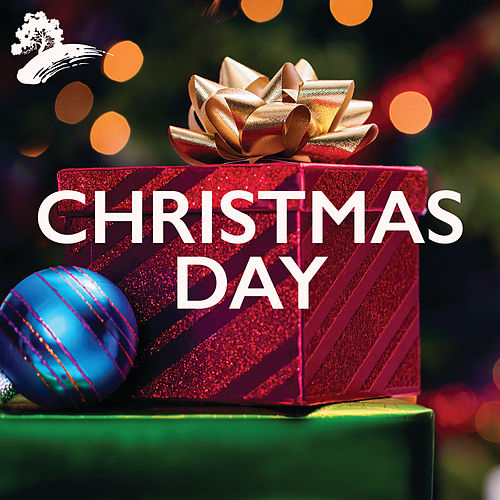 Christmas Day by Various Artists