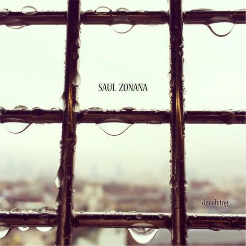 Devolving by Saul Zonana