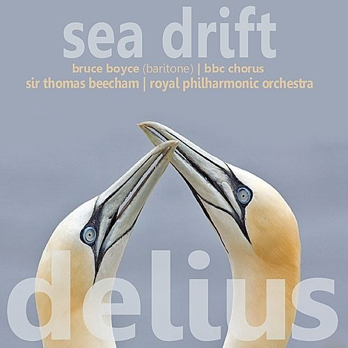 Delius: Sea Drift de Bruce Boyce