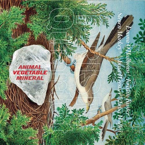 Animal, Vegetable, Mineral by Prism Quartet