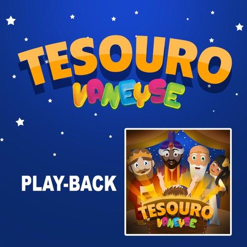 Tesouro (Playback) de Vaneyse