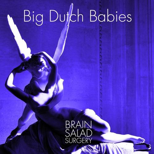 Brain Salad Surgery by Big Dutch Babies