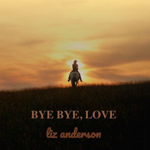 Bye Bye, Love de Liz Anderson