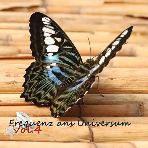 Frequenz ans Universum, Vol. 4 (Weihnachten) by Various Artists